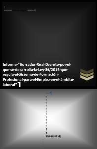 2015 09 30 Borrador RD Ley 30-2015 Sistema FP empleo